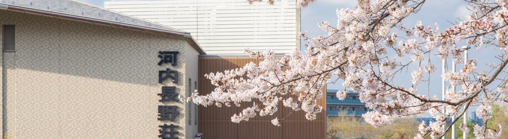 大阪の天然温泉宿、旅館なら「旅憩いの宿 河内長野荘」